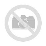 FC Fatihspor Oberderdingen